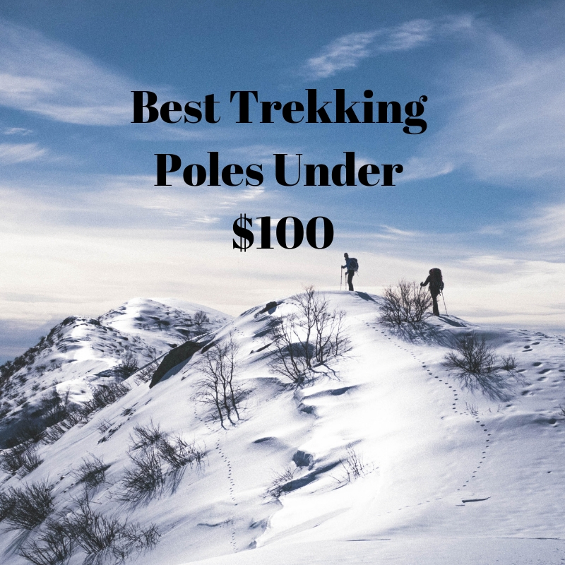 Best Trekking Poles Under  100 - YesHiking dd9a4a9a84c71